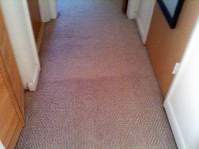Best Carpet Cleaning in Coconut Creek