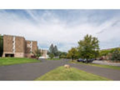 Park Guilderland Apartments - Two BR, One BA 825 sq. ft.