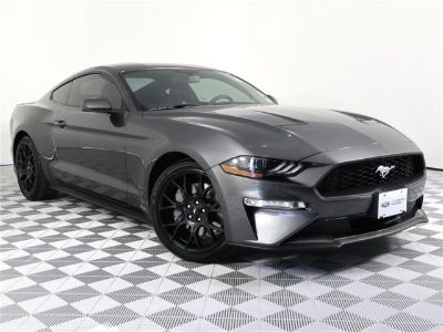 2018 Ford Mustang EcoBoost (Gray)