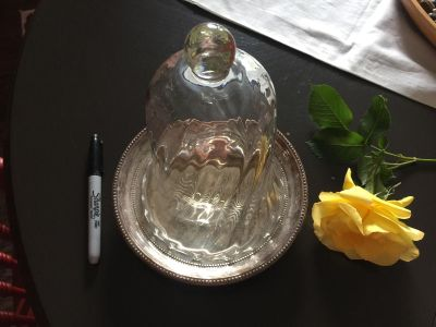 Cloche with silver tray