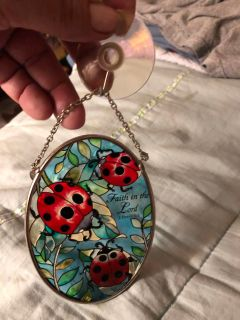 Lady Bug Stained Glass. 2 Peter 1:5