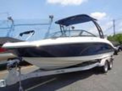 2019 Sea Ray 21 SPX Deep Blue with Tower