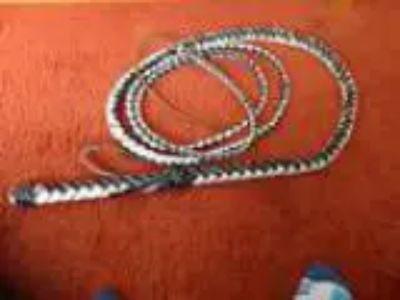 Whip (Lakewood)