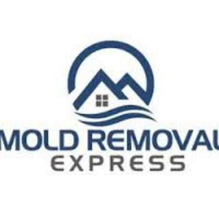 Mold Removal Service Denver
