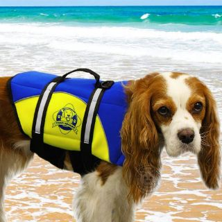 Sell Paws Aboard Dog Life Jacket Swim Boat Vest Blue Yellow Safety Vest MEDIUM NEW motorcycle in Philadelphia, Pennsylvania, United States, for US $37.95