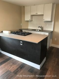 Renovated Second Floor 1 Bedroom with Laundry and Storage on Federal Hill