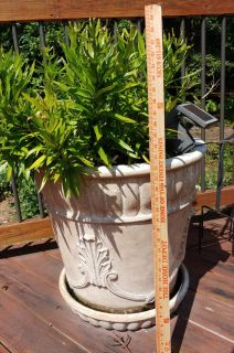 """Extra Large 22"""" Cast Stone Planter, built in dish"""