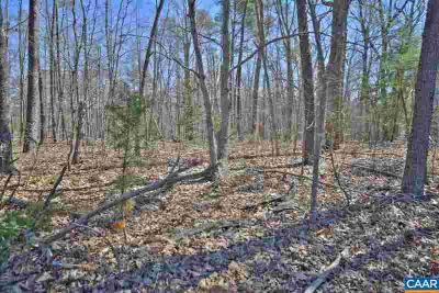 Lot 6 BURNLEY RD Barboursville, 5.001 Acre lot on Burnley Rd