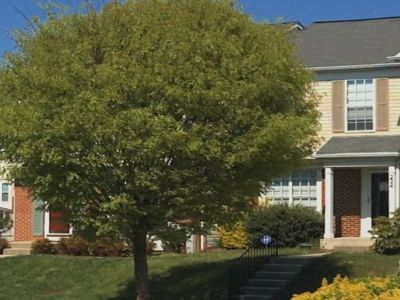224 Kirbys Landing Ct. Odenton MD For Sale