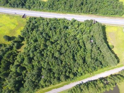 6+ Wooded Acres Commercial Zoned in Loxley!