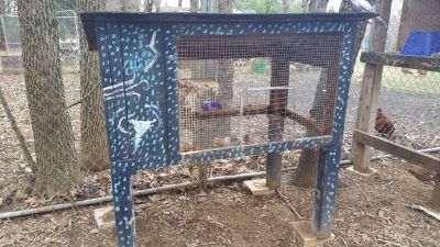 Rabbit Hutch or small animal Cage