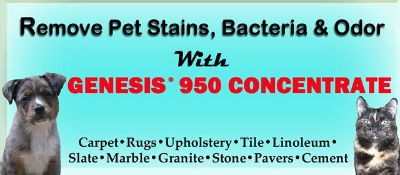 $42, Remove Pet Stains  Odors