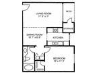 The Woods Apartments - 1 BR 1 BA - Large
