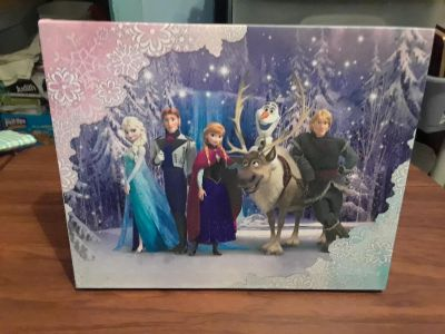 """New """"Frozen"""" Fiber Opic Picture"""