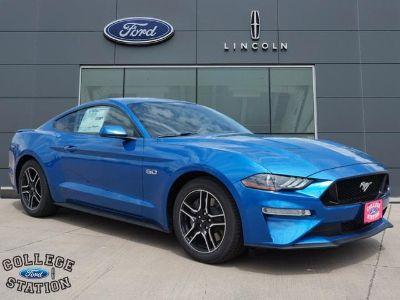 2019 Ford Mustang (Blue Metallic)