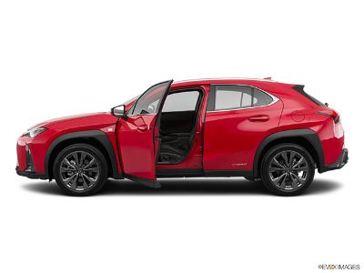 2019 Lexus UX 250h 5DR (NEBULA GRAY)
