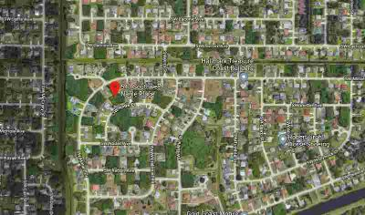 543 SW Nagle Place Port St Lucie, nice wooded lot in the