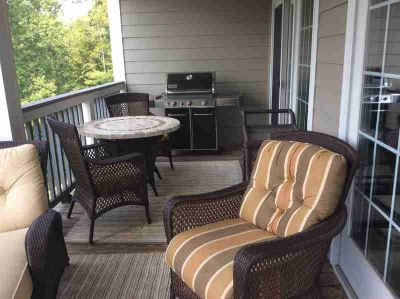 300 Pointe Shore DR 410 Moneta, This great Two BR Two BA