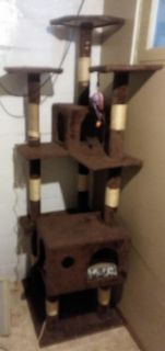Tall cat tower