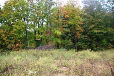 33 Christopher Court Batavia Township, Wooded lot on