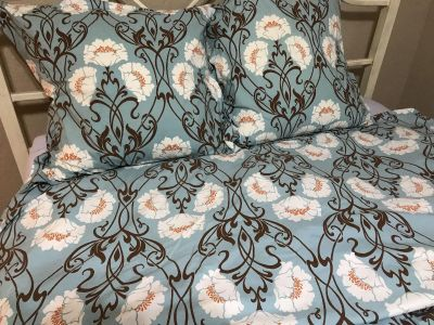 Pottery Barn Queen Duvet Cover, 2 Euro Shams with feather pillow inserts