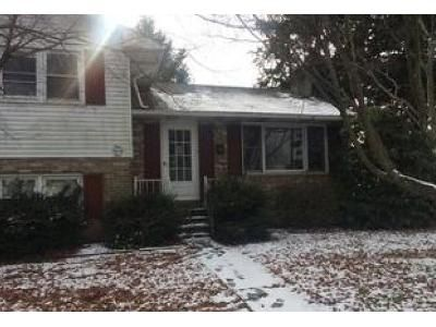 3 Bed 2 Bath Foreclosure Property in Selinsgrove, PA 17870 - Vine St
