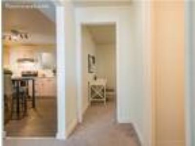 Roommate wanted to share 2 BR 1 BA condo/townhome...