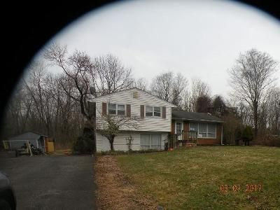 3 Bed 1 Bath Foreclosure Property in Branchville, NJ 07826 - Longbridge Rd