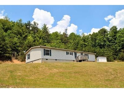3 Bed 2 Bath Foreclosure Property in Hiwassee, VA 24347 - Little Irish Rd