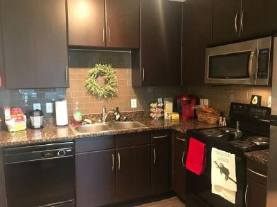[FREE RENT] Luxury Apartment for Sublease 1br - 1bath