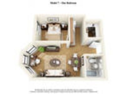 14 West Elm Apartments - The LaSalle | The State