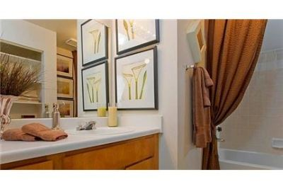 Apartment in prime location. Washer/Dryer Hookups!