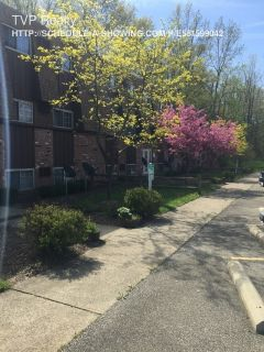 Single-family home Rental - 4747 B3 Oberlin Ave.
