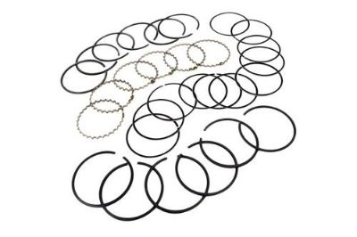 Purchase Omix-Ada 17430.29 - 1979 Jeep CJ Piston Ring Set motorcycle in Suwanee, Georgia, US, for US $80.04