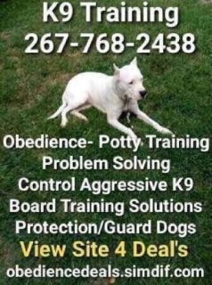 We train any dog any problem board and training or private lessons