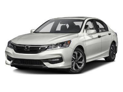 2016 Honda Accord EX-L (Gray)