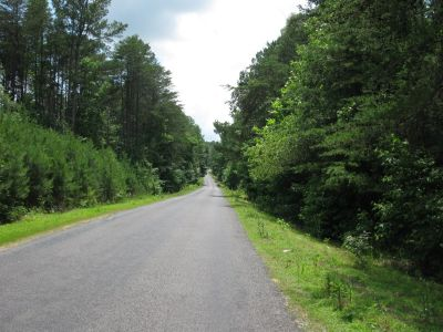Land and Timber In Alabama (Ider/Fort Payne Alabama) (FortPayne/Ider Ala