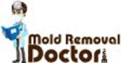 Mold Removal Doctor Tampa