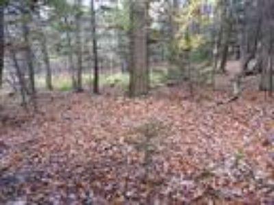 501 LHE Four BR, Futon & Sleeper Sofa~Brand New Hot Tub~Sleeps 10-12