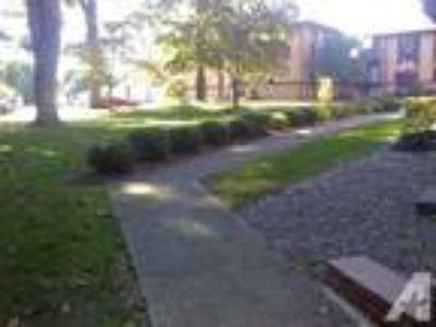 $39500 / 600ft - 600 square foot studio apartment - newly finished -CLOSE TO