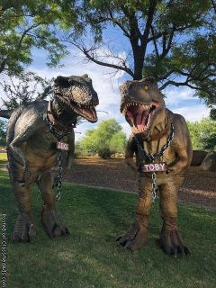 Realistic Dinisaurs for Rent! Kids Party's & Events
