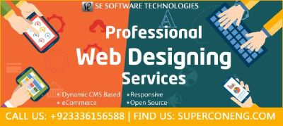 Custom Web Development by SE Software Technologies