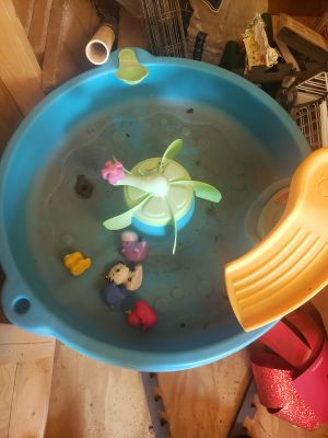 Water table with extra toys