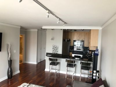 Old Town/Gold Coast rehabbed 1 bed condo - Available for 8/1 move in!