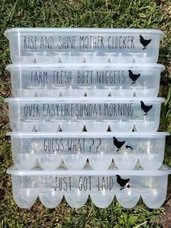Plastic egg containers holds 12 eggs!