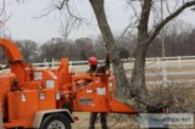 Resident and commercial tree service