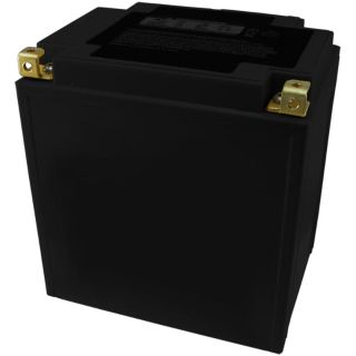 Buy YTX30L-BS Battery for POLARIS 700 Ranger 4x4 2008 2009 2010 18 MON WARRANTY motorcycle in Jacksonville, Florida, US, for US $92.95