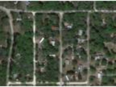0.22 Acres for Sale in Hernando, FL