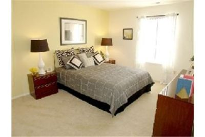Bright Southfield, 1 bedroom, 1 bath for rent