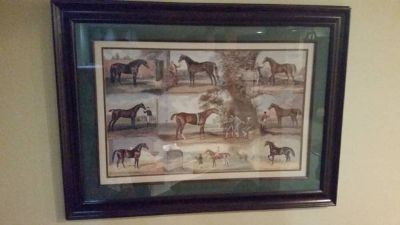 """Picture Print - Horse Picture - Matted and Framed - 24"""" x 36"""""""